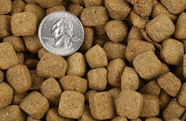 Image Result For Innova Pet Healthy Dog Food Natural Cat Food
